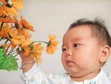 Free Lovely Baby And Flower Royalty Free Stock Images - 6811489