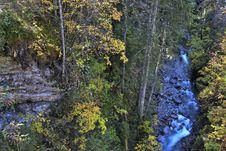 Free Alpine Stream Stock Photography - 6811922