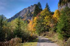Free Alpine Trail Stock Photos - 6811983