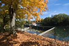 Autumn Leaves On River Iller Royalty Free Stock Photography
