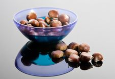 Free Chestnuts Royalty Free Stock Images - 6813449