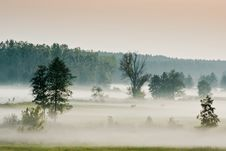 Meadows In Fog Royalty Free Stock Images