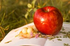 Free Apple On Herbal Book Royalty Free Stock Photos - 6813688