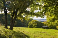 Landscape At Autumn Royalty Free Stock Photos