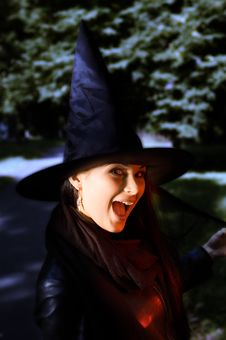 Free Screaming Witch In A Hat Stock Photos - 6814423
