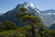 Free New Zealand S Southern Alps Stock Photography - 6814632