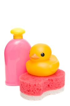 Free Sponge Stock Photos - 6815113