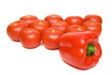 Free Tomato Stock Photo - 6815150