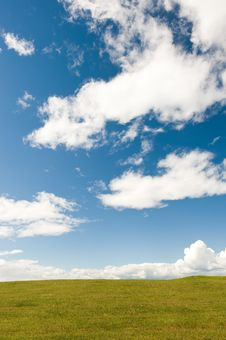 Free Green Meadow Royalty Free Stock Photo - 6815905