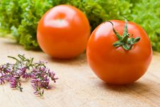 Free Tomatoes And Lettuce Royalty Free Stock Photo - 6816015