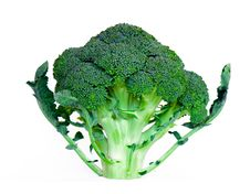 Free Broccoli Royalty Free Stock Images - 6816909