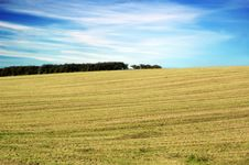 Free Agricultural Field Stock Image - 6818031