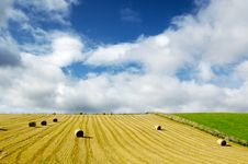 Free Field Of Hay Bales Under Blue Cloudy Sky Royalty Free Stock Images - 6818179