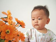 Free Lovely Baby And Flower Royalty Free Stock Photo - 6819285