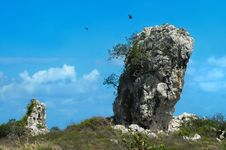 Free Landscape With Rock Formation Stock Images - 6819304