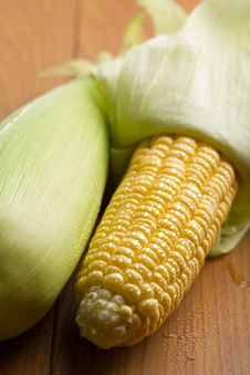 Fresh Maize With Water Droplets Royalty Free Stock Images