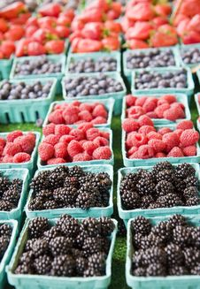 Free Four Kinds Of Berries Royalty Free Stock Images - 6822629