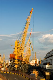 Free Elevating Cranes In Port Royalty Free Stock Photography - 6822957