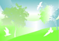 Free Green Background With Trees And Birds Royalty Free Stock Photo - 6822995