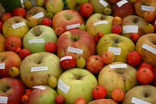 Free Apples Different Quality Stock Photography - 6823172