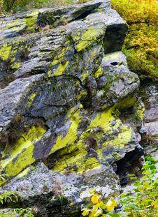 Atumn Rock Texture Stock Image