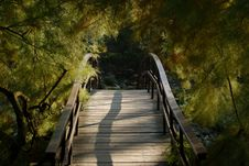 Free Wooden Bridge Stock Photography - 6824602