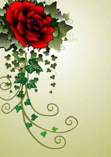 Free Red Rose And Ivy Background Stock Photography - 6826512