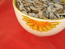 Free Sunflower Seeds Stock Photography - 6826902