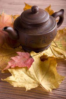 Free Autumn Stock Photo - 6827620