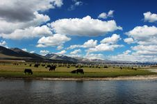 Clouds And Skies In Tibet Stock Photography