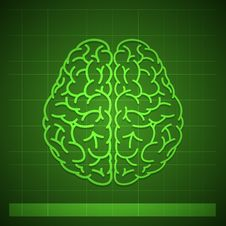 Free Human Brain Concept On Green Background Stock Photography - 68265112