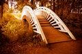 Free Bridge To Autumn Royalty Free Stock Image - 6830436