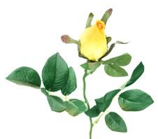 Free Single Artificial Yellow Rose Royalty Free Stock Image - 6830596