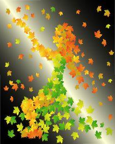 Free Autumn Royalty Free Stock Photography - 6831707
