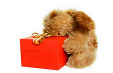 Free Toy Dog With Gift Box Stock Images - 6832224