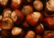 Free Chestnuts From Above Stock Photography - 6832842