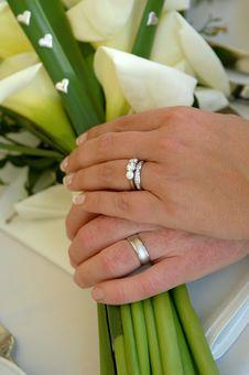 Free Wedding Rings Stock Image - 6834871
