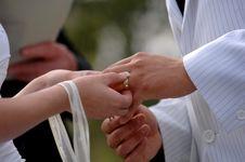 Free Wedding Royalty Free Stock Image - 6835146