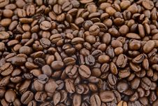 Free Coffee Beans As Background Royalty Free Stock Photo - 6836615