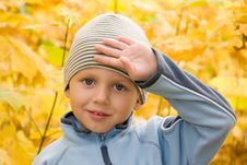 Free Boy Gesturing In Autumn Scenery Royalty Free Stock Photo - 6837285