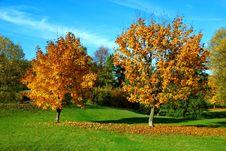 Free Autumn 2 Stock Photo - 6837660