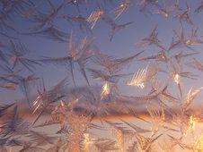Free Frosty Pattern Stock Photo - 6837730