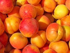 Free Fresh Apricot Royalty Free Stock Images - 6839109