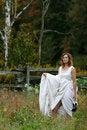 Free Wedding Dress Royalty Free Stock Images - 6844989