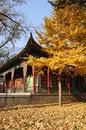 Free Jinci Temple Scenery Royalty Free Stock Photos - 6849868