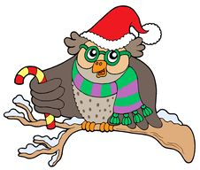 Owl In Christmas Outfit Royalty Free Stock Image