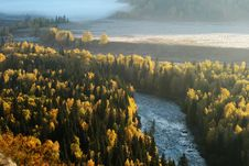 Free River Coross Birch Wood Forest Royalty Free Stock Photos - 6843068