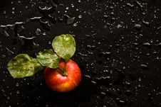 Free Very Wet Apple With Leafs On Black Royalty Free Stock Photo - 6845105