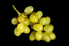 Free Bunch Of Grapes Royalty Free Stock Image - 6845196