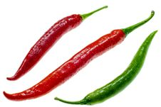 Free Three Chilis Royalty Free Stock Photo - 6846605